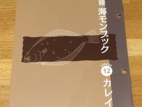AJI_04_flatfish